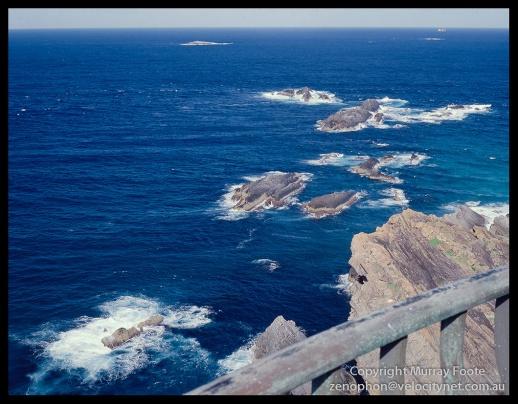 Sugarloaf-Point---Seal-Rock