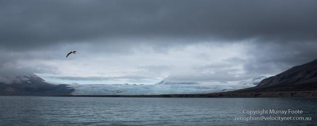 Nordenskjold Glacier
