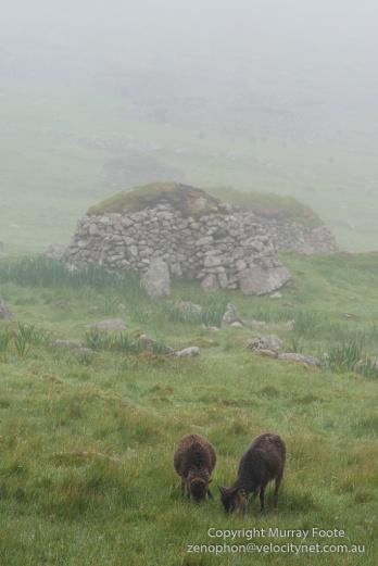 Archaeology, Architecture, Hebrides, History, Landscape, Photography, Scotland, Soay sheep, St Kilda, Travel
