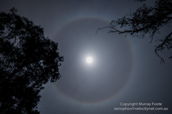 Ring around the moon, Canberra, June 2014