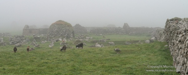 Archaeology, Architecture, Hebrides, History, Landscape, Photography, Scotland, Soay sheep, St Kilda, Travel