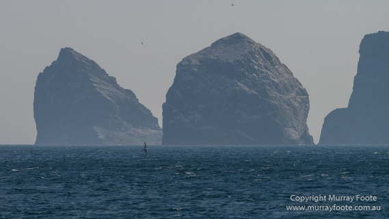 Hebrides, History, Landscape, Nature, Photography, Scotland, seascape, St Kilda, Travel