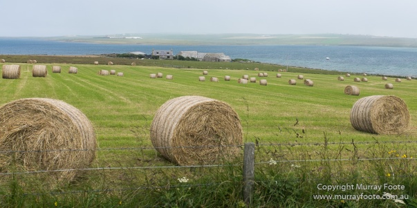 Archaeology, Architecture, Deerness, History, Landscape, Orkney, Photography, Scotland, seascape, Travel
