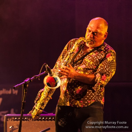 Joe Camilleri, Black Sorrows