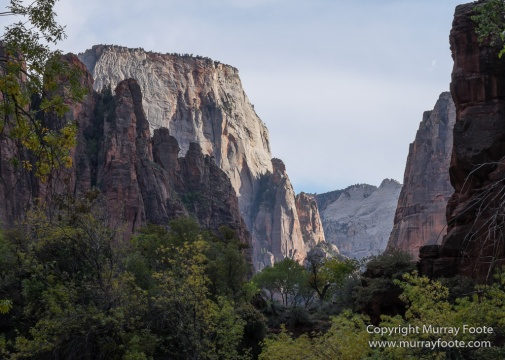 Landscape, Photography, Southwest Canyonlands, Travel, USA, Utah, Zion Canyon