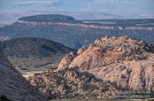Landscape, Lava point, Photography, Southwest Canyonlands, The Narrows, Travel, USA, Utah, Wilcat Trail Head, Zion Canyon