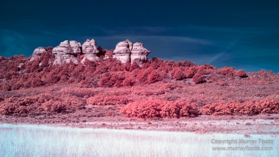 Infrared, Landscape, Photography, Southwest Canyonlands, Travel, USA, Utah, Zion Canyon
