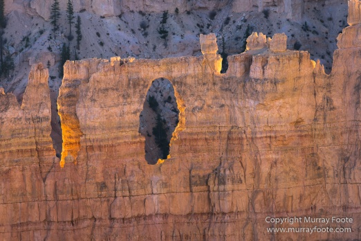 Bryce Canyon, Landscape, Photography, Southwest Canyonlands, Travel, USA, Utah