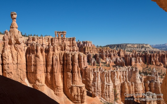 Bryce Canyon, Landscape, Photography, Southwest Canyonlands, Travel, USA, Utah