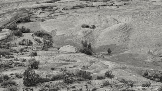Arches National Park, Black and White, Delicate Arch, Landscape, Masa Arch, Monochrome, Photography, Southwest Canyonlands, Travel, USA, Utah