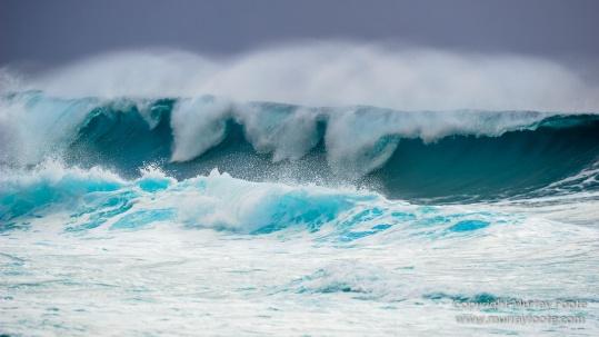 Hawaii, Oahu, Photography, Pipeline, seascape, Surfing, Travel