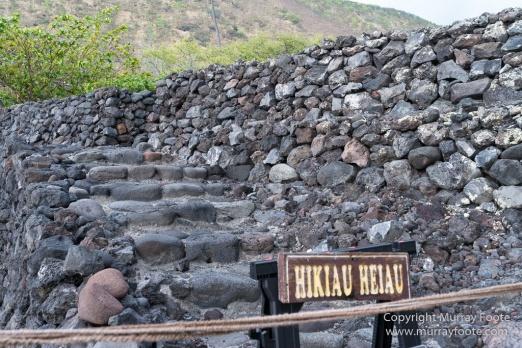 Green Turtles, Hawaii, Hikiau Hieau, Kealakekua Bay, Landscape, Nature, Photography, Punalu'u Black Sand Beach, seascape, The Big Island, Travel, Wildlife