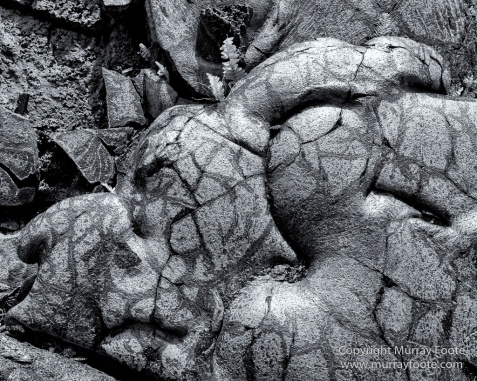 Archaeology, Black and White, Green Turtles, Hawaii, Kilauea, Landscape, Lava, Monochrome, Nature, Photography, Pu'uhonua o Honaunau, The Big Island, Travel, Waipio Bay, Wildlife