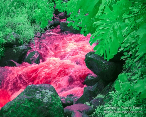 Hawaii, Iao Valley, Infrared, Kauai, La Perouse Bay, Landscape, Molokai, Nature, Photography, seascape, Travel