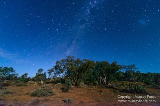 Australia, Boolcoomatta, Kangaroos, Landscape, Night Photography, Photography, South Australia, Travel