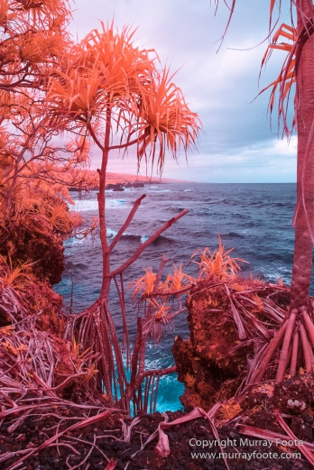 Archaeology, Hawaii, Heiaus, History, Infrared, Kahanu Gardens, Landscape, Maui, Photography, Pi'ilanihale Heiau, seascape, Travel