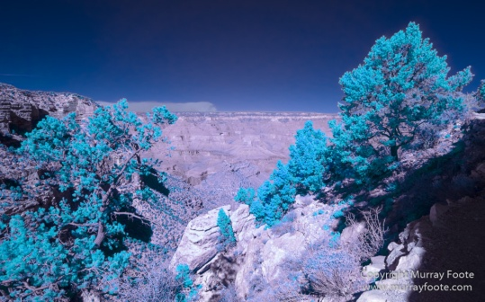 Arizona, Grand Canyon, Infrared, Landscape, Night Photography, Photography, Southwest Canyonlands, Travel, USA