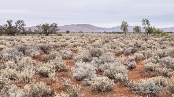 Australia, Boolcoomatta, Dome Rock, Landscape, Nature, Night Photography, Photography, South Australia, Travel