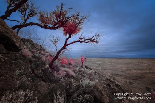 Australia, Boolcoomatta, Boolcoomatta Station, Dome Rock, Infrared, Landscape, Nature, Photography, South Australia, Travel, White's Whim and Well