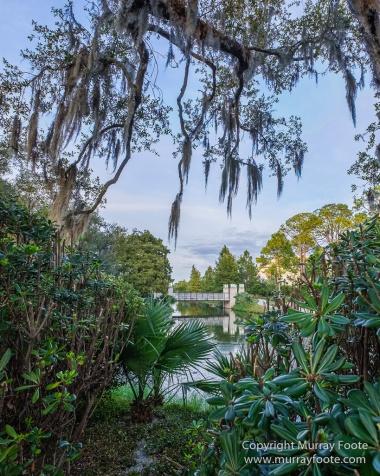 Besthoff Sculpture Garden, Landscape, New Orleans, Photography, Sculpture, Travel, USA