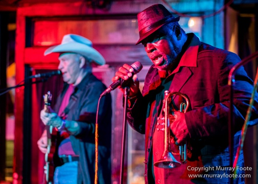 Blues, Frenchmen Street, Live Music, New Orleans, Photography, Travel, USA, Vaso, Willie Lockett and the Blues Crewe