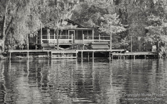 Architecture, Bayou, Black and White, Infrared, Landscape, Mississippi River, Monochrome, Nature, New Orleans, Photography, Travel, USA, Wilderness