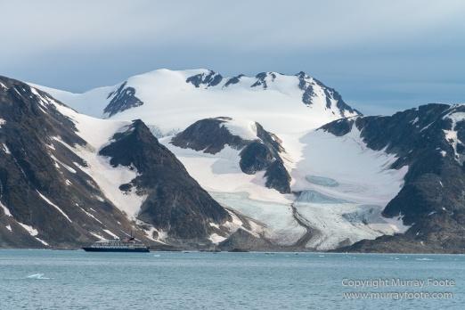 Glacier, Harbour Seals, Icebergs, Nature, Photography, seascape, Smeerenburg, Spitsbergen, Travel, Wilderness, Wildlife