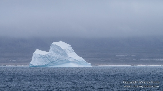 Greenland, Icebergs, Landscape, Nature, Photography, Scoresby Sund, seascape, Travel, Wilderness