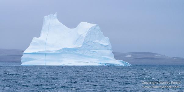 Greenland, Icebergs, Landscape, Nature, Photography, Scoresby Sund, seascape, Travel, Wilderness