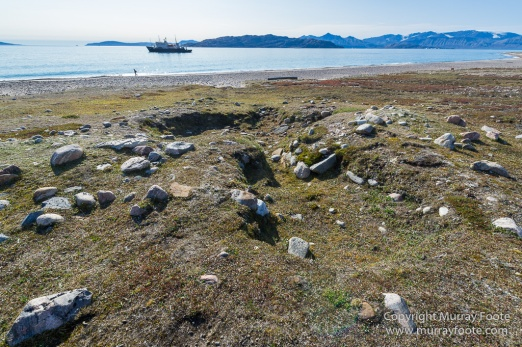 Archaeology, Clavering Island, Greenland, Inuit, Landscape, Musk Ox, Nature, Photography, seascape, Travel, Wilderness, Wildlife