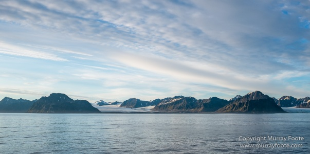 Blue whale, Glacier, Nature, Photography, seascape, Spitsbergen, Travel, Whale, Wilderness, Wildlife