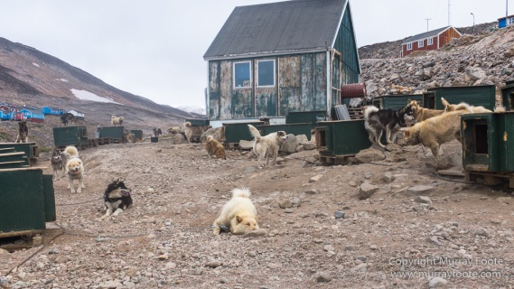 Greenland, History, Huskies, Inuit, Ittoqqortoomiit, Landscape, Nature, Photography, seascape, Street photography, Travel