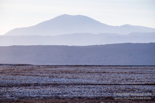 Atacama Desert, Chile, Coyote Leap, Laguna Tebenquiche, Landscape, Nature, Photography, Pukará de Quitor, Tatio, Travel, Tulor, Valee de la Luna, Wilderness, Wildlife