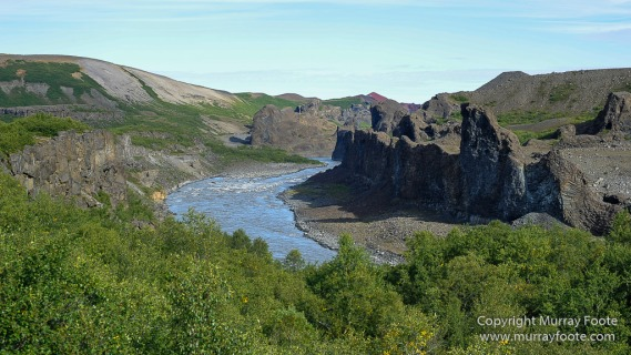 Hljóðaklettar, Iceland, Jökulsá á Fjöllum river, Jökulsárgljúfur Canyon, Jökulsárgljúfur National Park, Landscape, Nature, Photography, Travel, Vesterdalur, Wilderness