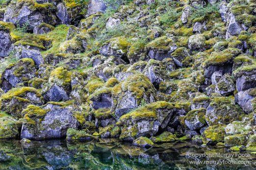 Ásbyrgi, Iceland, Jökulsárgljúfur National Park, Landscape, Nature, Photography, Reflections, Travel, Wilderness