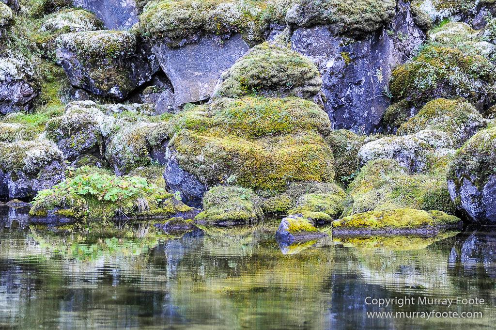 Ásbyrgi, Iceland, Jökulsárgljúfur National Park, Landscape, Nature, Photography, Reflections, Travel, Wilderness1