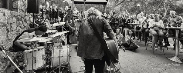 Australia, Blues, Blues Festivals, Live Music, Photography, Thredbo, Thredbo Blues Festival, Travel
