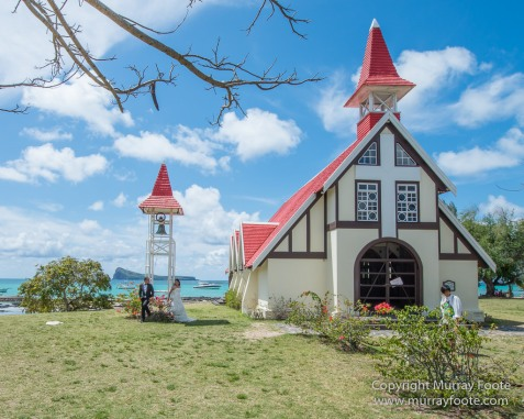 Archaeology, Architecture, History, Landscape, Mauritius, Notre Dame Auxiliatrice Chapel, Photography, seascape, Sir Seewoosagur Ramgoolam Botanical Garden, Travel, Wildlife