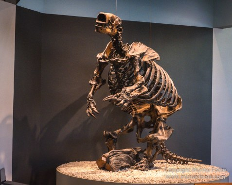 Archaeology, Art, La Brea Tar Pits, LA County Museum, Photography, Travel, USA