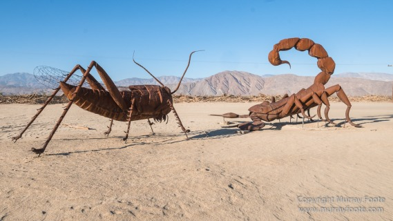 Art, Photography, Salton Sea, Sculpture, Travel, USA