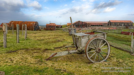 Falkland Islands, History, Landscape, Nature, Pebble Island, Photography, seascape, Travel