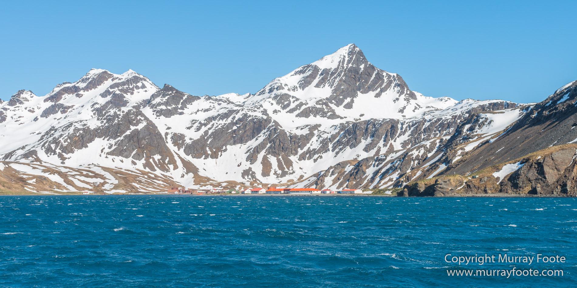 Grytviken Part 1 Murray Foote
