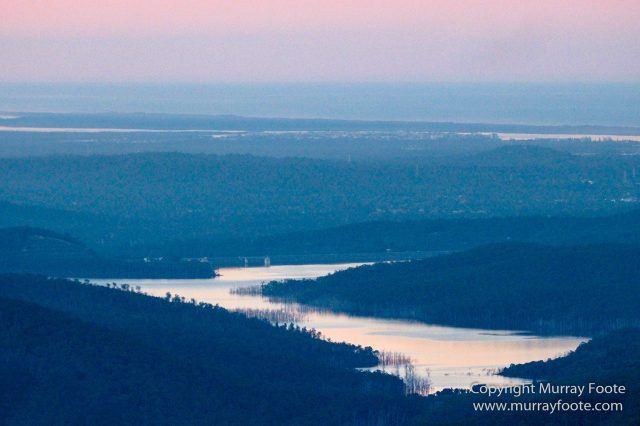 Australia, Binna Burra, Bruny Island, Bushwalking, Lamington National Park, Landscape, Nature, Photography, Queensland, Tasmania, Travel, Wildlife