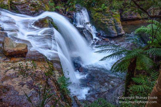 Australia, Landscape, Liffey Falls, Nature, Photography, Tasmania, Travel, Waterfall, Wilderness