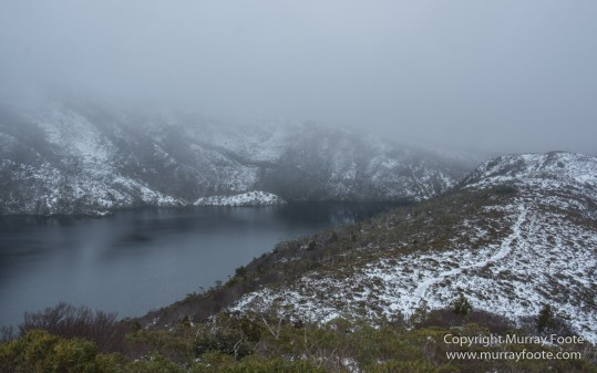 Australia, Barn Bluff, Bennett's Wallaby, Cradle Mountain, Crater Lake, Landscape, Nature, Overland Track, Photography, Tasmania, Travel, Waterfall, Wilderness, Wildlife