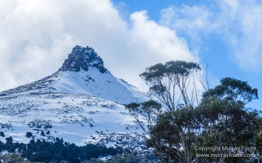 Australia, Cathedral Mountain, Ducane Range, Kia Ora Hut, Landscape, Mount Doris, Mount Ossa, Nature, Overland Track, Pelion East, Pelion Gap, Photography, Tasmania, Travel, Wilderness