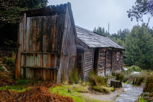 Australia, Bert Nichols Hut, Fergusson Falls, Kia Ora Hut, Landscape, Macro, Nature, Overland Track, Photography, Tasmania, Travel, Waterfall, Wilderness