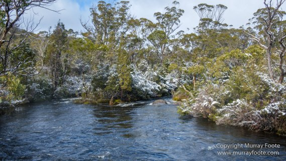Australia, Bert Nichols Hut, Landscape, Narcissus Bay, Nature, Overland Track, Photography, Tasmania, Travel, Wilderness