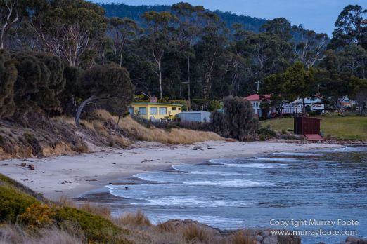 Architecture, Australia, Bennett's Wallaby, Bruny Island, Landscape, Nature, Photography, seascape, Tasmania, Travel, Wildlife