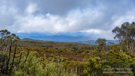 Australia, Landscape, Mount Hartz National Park, Nature, Photography, Tasmania, Travel, Wilderness